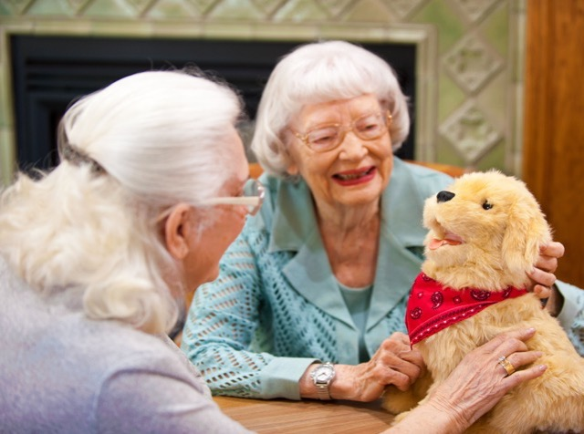 Robot Pets for Elderly and Dementia Patients - Speech recognition
