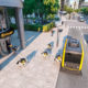 Robot Dogs Deliver Packages Driverless Vehicle CUBE - YellRobot