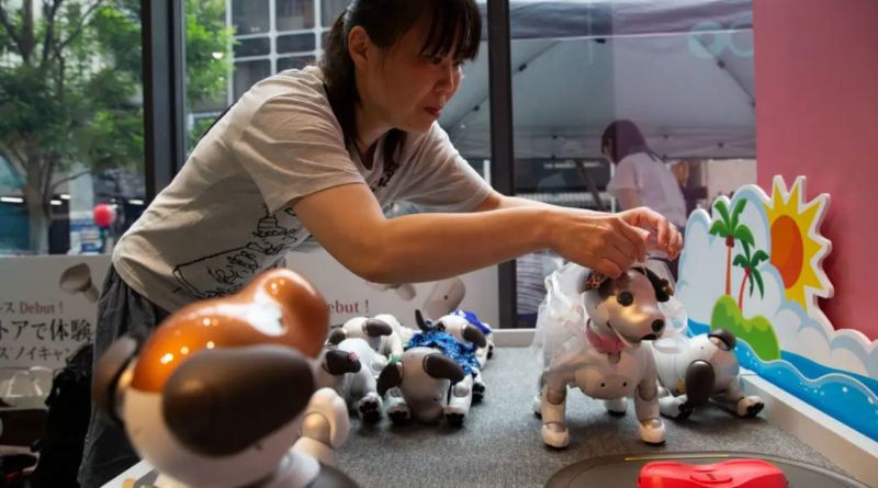 aibo robot dog playdate cafe - YellRobot